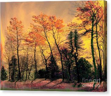 Canvas Print featuring the photograph Windy  by Elfriede Fulda