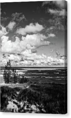 Canvas Print featuring the photograph Windy Morning On Lake Michigan by Michelle Calkins