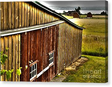 Wine Barn Canvas Print