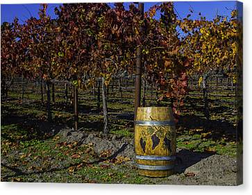 Wine Barrel In Vienyard Canvas Print by Garry Gay