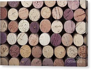 Wine Corks  Canvas Print by Jane Rix