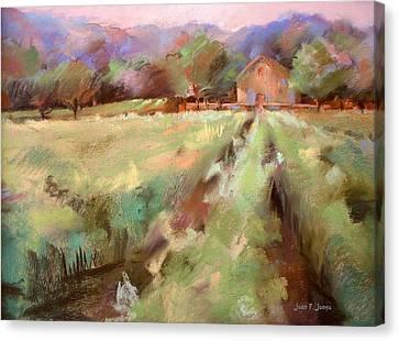 Wine Country 2 Canvas Print by Joan  Jones
