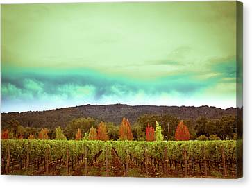 Wine In Time Canvas Print by Ryan Weddle