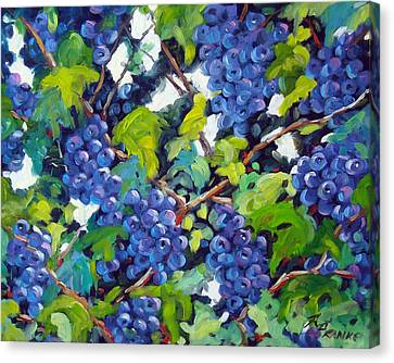 Wine On The Vine Canvas Print by Richard T Pranke