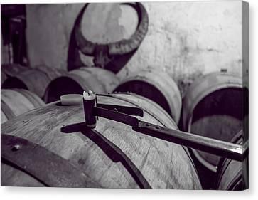 Wine Storage Canvas Print