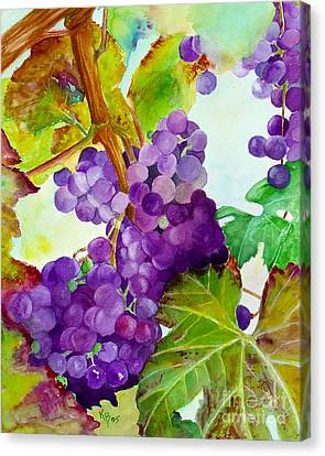 Wine Vine Canvas Print by Karen Fleschler