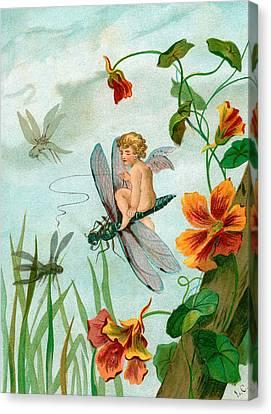 Winged Fairy Riding A Dragonfly Near Nasturtium Flowers Canvas Print