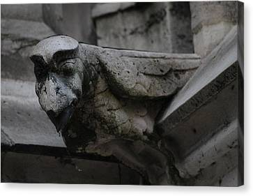 Canvas Print featuring the photograph Winged Gargoyle by Christopher Kirby