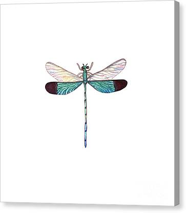 Canvas Print featuring the painting Winged Jewels 1, Watercolor Tropical Dragonfly Aqua Blue Black by Audrey Jeanne Roberts