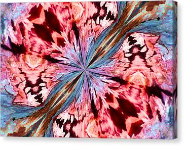 Winged Mite Canvas Print by Karen M Scovill