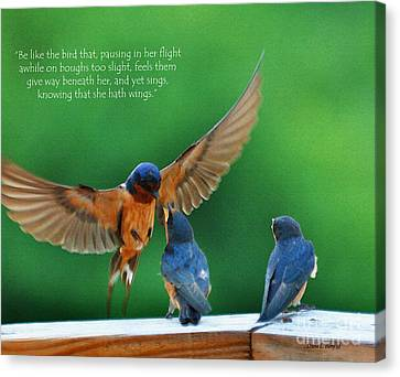 Swallow Canvas Print - Wings by Diane E Berry