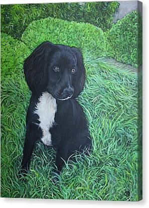 Canvas Print featuring the painting Winnie by Tom Roderick