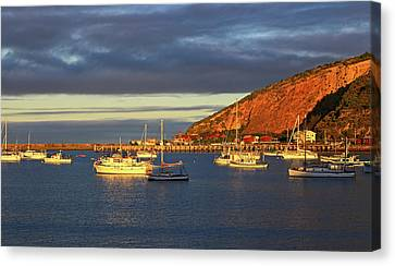 Canvas Print featuring the photograph Winter Afternoon Sun At Friendly Bay by Nareeta Martin