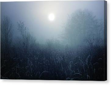 Winter Afternoon - Poland Canvas Print by Cambion Art
