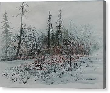 Winter, Alberta Canvas Print