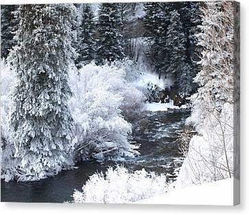 Winter Along The Creek Canvas Print by DeeLon Merritt
