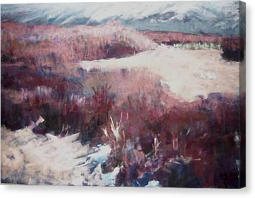 Winter At Fish Slough Iv Canvas Print by Anita Stoll