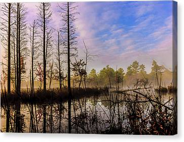 Winter At Quaker Bridge Canvas Print by Louis Dallara