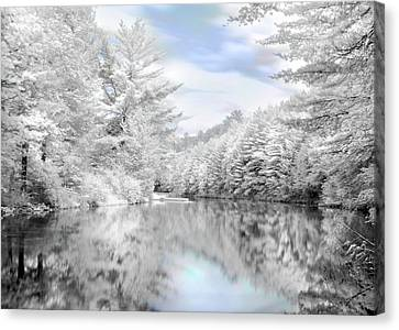 Winter At The Reservoir Canvas Print by Lori Deiter