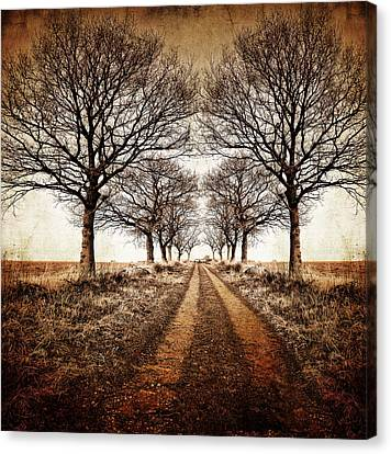 Frosty Canvas Print - Winter Avenue by Meirion Matthias