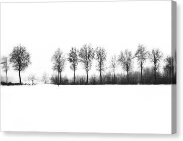 Winter Bareness Canvas Print by Silvia Ganora