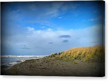 Winter Beach Canvas Print by Mg Blackstock