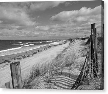 Winter Beach View - Black And White Canvas Print by Dianne Cowen
