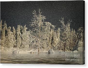 Winter Begins Canvas Print by Lois Bryan