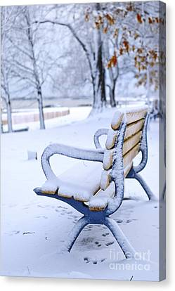 Winter Bench Canvas Print by Elena Elisseeva