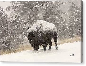 Canvas Print featuring the digital art Winter Bison by Walter Chamberlain