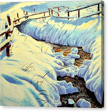 Winter Brook Canvas Print