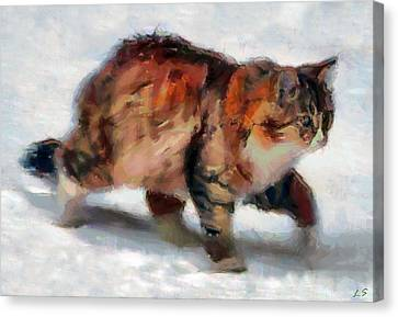 Winter Cat Canvas Print by Sergey Lukashin