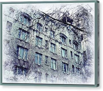 Winter Canvas Print by Cathie Tyler