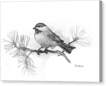 Winter Chickadee Canvas Print by Cynthia  Lanka