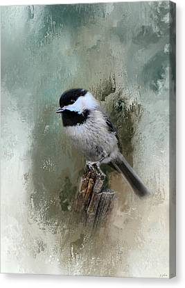 Winter Chickadee Canvas Print by Jai Johnson