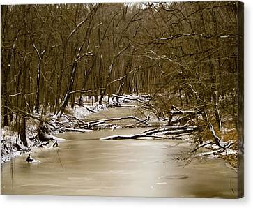 Canvas Print featuring the photograph Winter Creek by Bonnie Willis