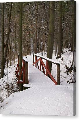 Canvas Print featuring the photograph Winter Crossing by Sara  Raber