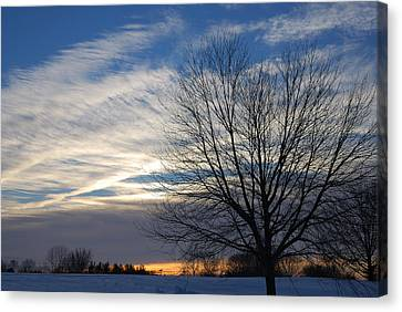 Canvas Print featuring the photograph Winter Dawn by Steven Richman