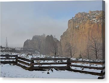Winter Day Canvas Print by Linda Larson