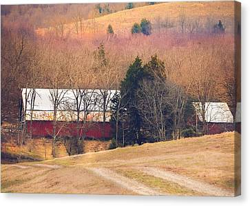 Winter Day On A Tennessee Farm Canvas Print by Debbie Karnes