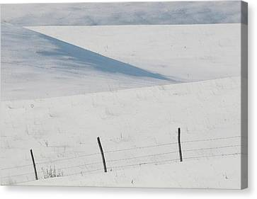 Winter Day On The Prairies Canvas Print by Mark Duffy