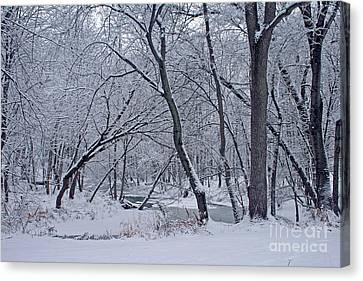 Winter Days Along The Creek Canvas Print