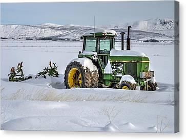 Winter Deere Canvas Print