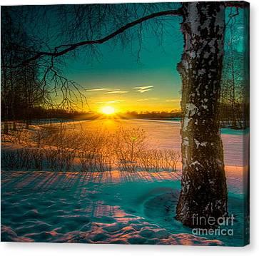 Winter Delight In British Columbia Canvas Print by Rod Jellison