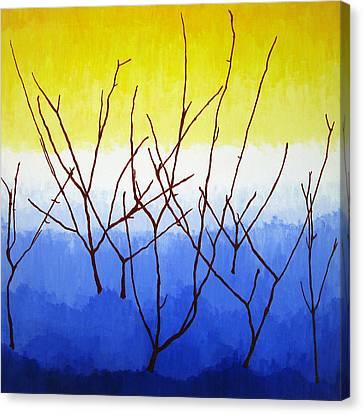 Winter Dogwood Canvas Print by Oliver Johnston