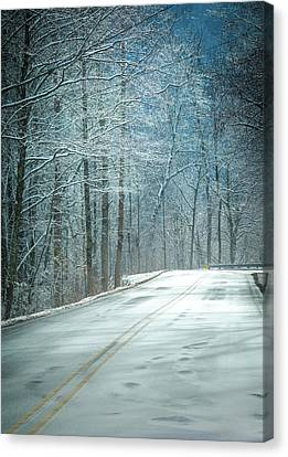 Winter Dreams Canvas Print by Karen Wiles