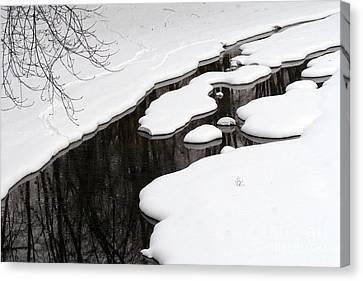 Canvas Print featuring the photograph Winter Dreams by Paula Guttilla