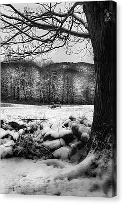 Canvas Print featuring the photograph Winter Dreary by Bill Wakeley