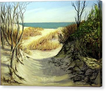 Winter Dunes Canvas Print by Joan Swanson