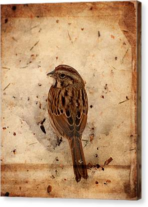 Winter Feast I - Textured Canvas Print